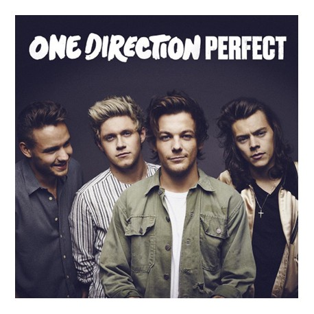 One Direction CD singolo: Perfect
