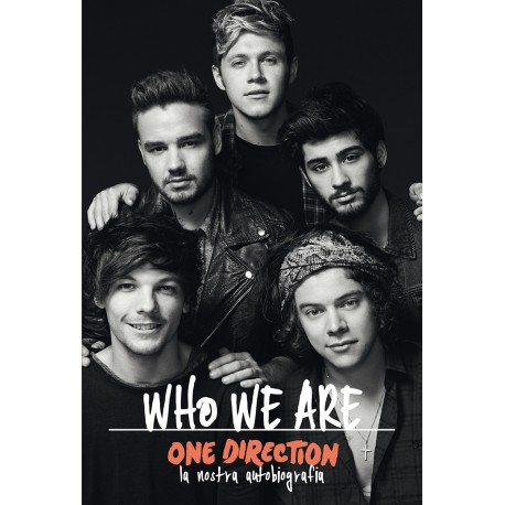 One Direction Who We Are copertina